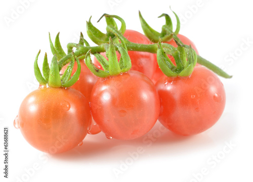 tomatoes isolate on white background