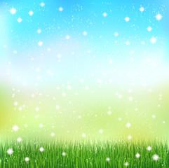 芝生 空 風景