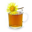 Herbal tea with elecampane in a glass mug