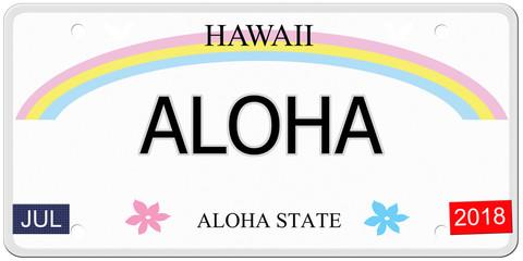 Aloha Hawaii License Plate