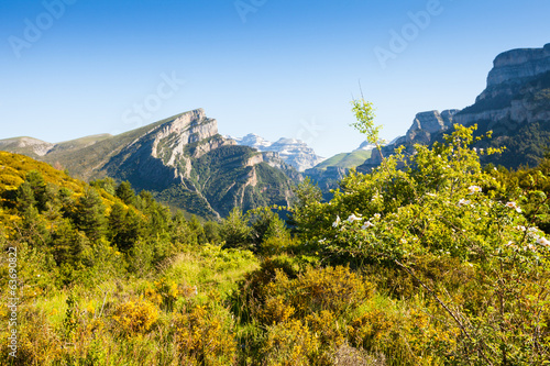 View of Pyrenees mountains landscape