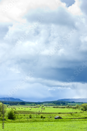 landscape of Strathspey Valley, Highlands, Scotland