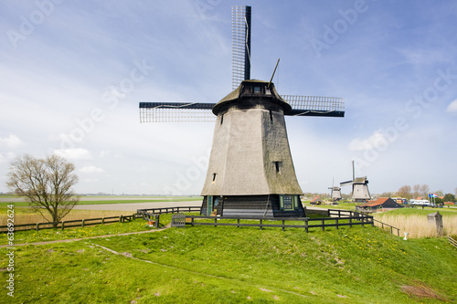 windmills near Alkmaar, Netherlands