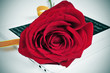 red rose and e-book, for Saint Georges Day in Catalonia, Spain