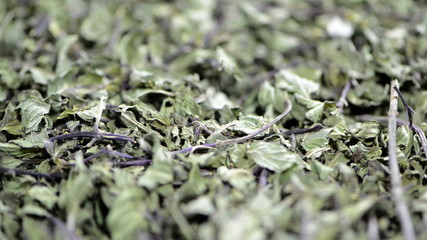 Dried Mint (not loopable)