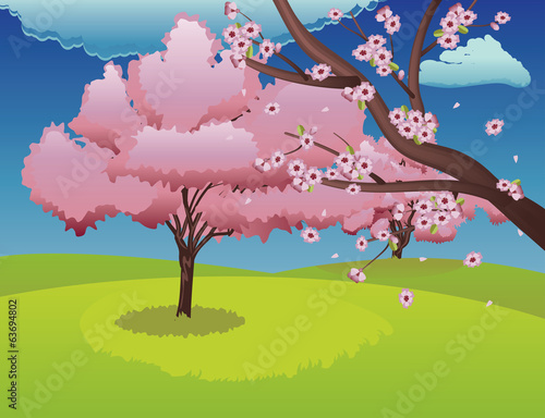 Sakura on Grass Field