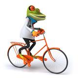 Frog doctor