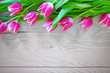 Pink tulips on gray wood background.