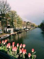 rainbow over typical canal houses
