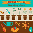 Infographics growing plant