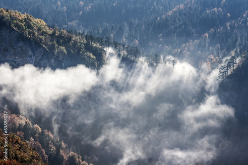 mountain in fog