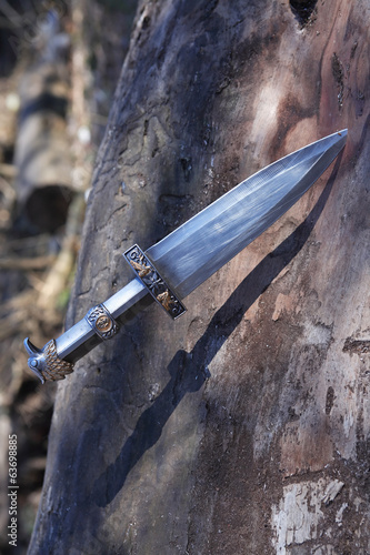 Dagger In Wood