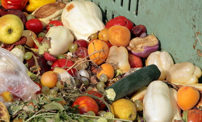 damaged fruits and vegetables to use as fertilizer