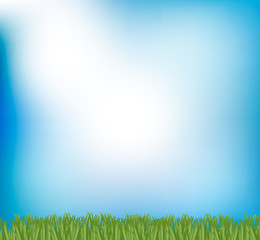 Blue sky and green grass background, vector illustration