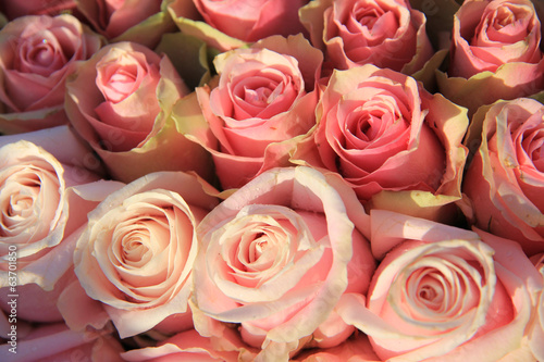 Pink roses in a bridal arrangement