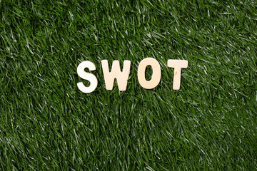 SWOT Wooden Sign On Grass