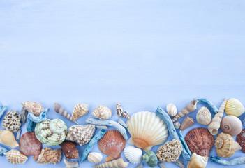 Blauer Hintergrund mit Treibgut und Muscheln