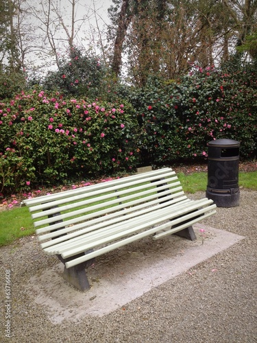 park bench and pink flowers
