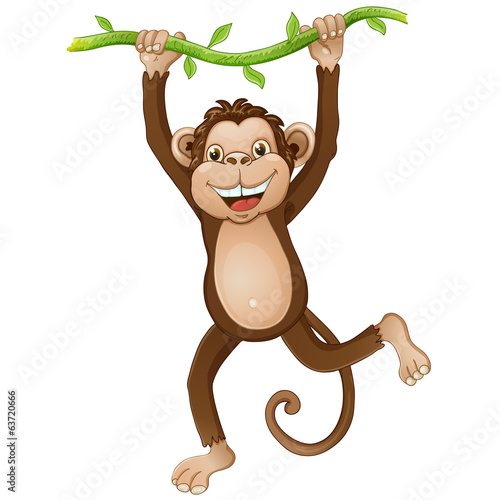 Illustration of a monkey hanging on a vine