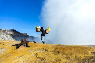 sulphur worker