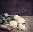 canvas print picture - White roses on a book in a vintage style. Toned image