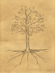 Tree Sketch with leaves on paper
