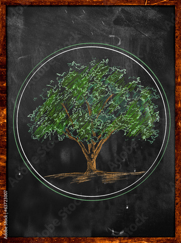 Tree Sketch color leaves on blackboard