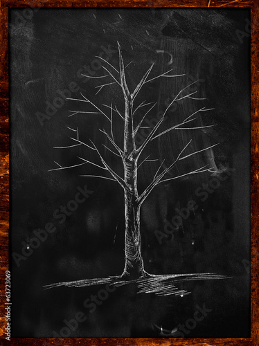 Tree Sketch without leaves on blackboard