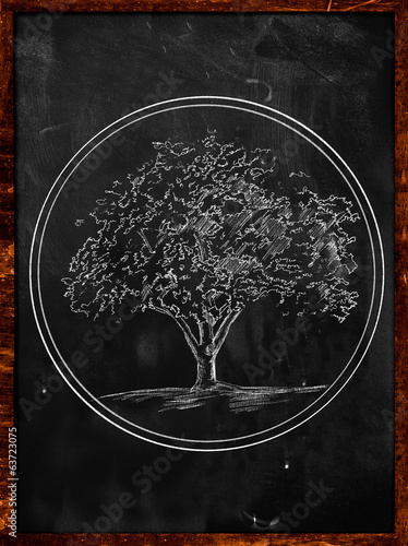 Tree Logo Sketch on Blackboard