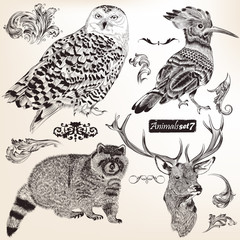Collection of vector hand drawn animals