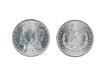 Morgan Silver Dollars on White