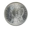 Morgan Silver Dollar on White