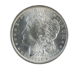 Morgan Silver Dollar on White