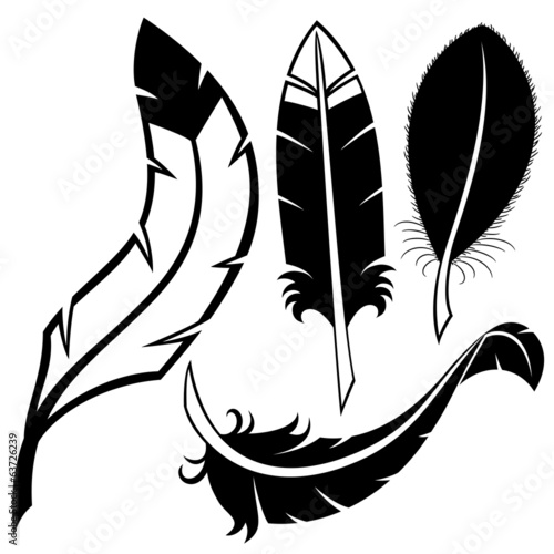 Vector set. Feathers.