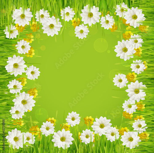 Grass and daisy flower frame