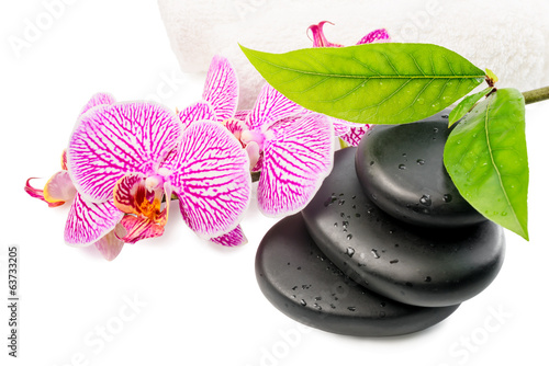 Spa still life with stripped orchid,  black stones with drops, g
