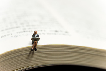 本の上に座っているミニチュアの人形