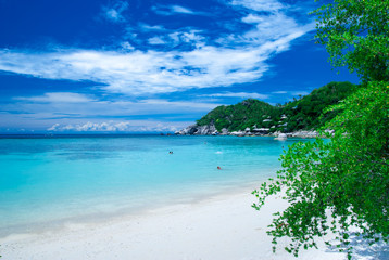 Wild beach in Ko Tao Island, Thailand