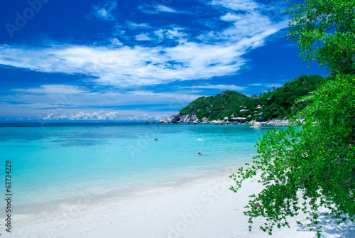 canvas print picture Wild beach in Ko Tao Island, Thailand