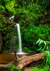 Doi Suphet national park waterfall, Chang Mai,Thailand