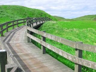 Wooden path to walk around an island