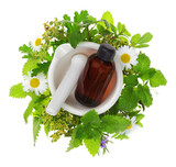 Mortar and pestle with fresh herbs and essential oil bottle - Fine Art prints