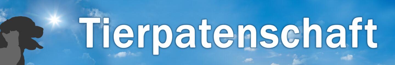 Website Banner - Tierpatenschaft - Format 6 zu 1 - g803