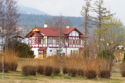 House with wooden decoration