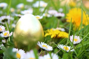 goldenes ei in der wiese