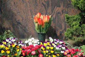 Blütenmeer schmückt Grab im Frühling