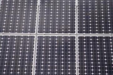solarplatten in natur