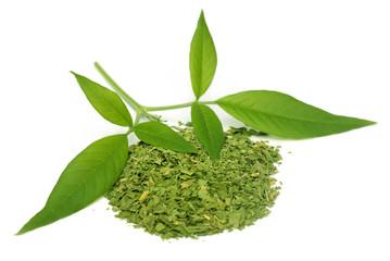 Vitex Negundo or Medicinal Nishinda leaves