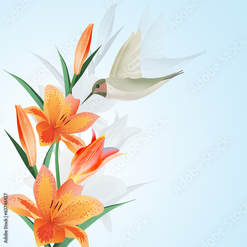 Background with humming bird and flowers.