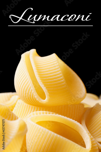 Uncooked Italian macaroni  lumaconi on black background